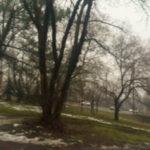 vlcsnap-2018-03-19-16h02m26s624