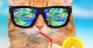 relax-promo